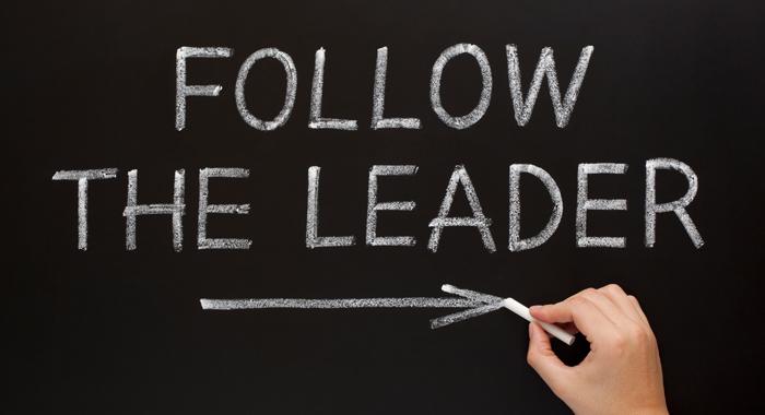 follow the leader blog